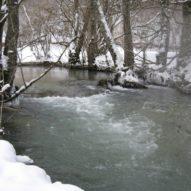 Le Suzon en hiver